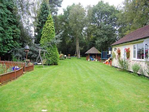 A dog home boarding garden in Congleton