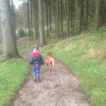 Home Dog Boarding in Macclesfield – Darwin @ Mel and Duncan's (10/12/15)