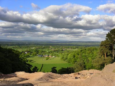 Alderley Edge Dog Walking Image