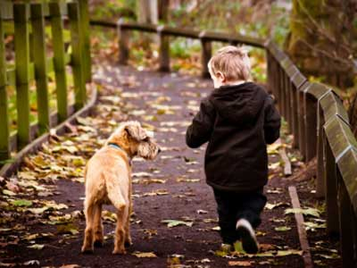 Child Walking A Dog In Cheshire Image